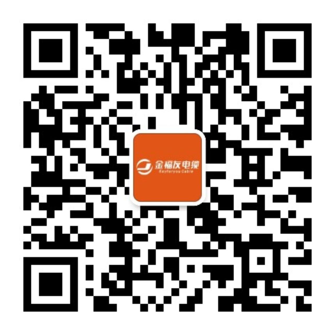 广东华洋电缆